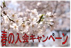 ボタン(春キャン).png
